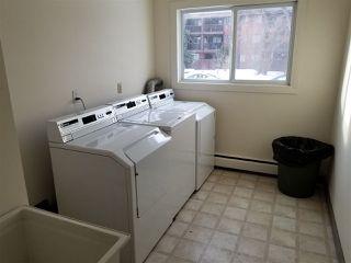 Photo 6: 305 10825 113 Street in Edmonton: Zone 08 Condo for sale : MLS®# E4155448