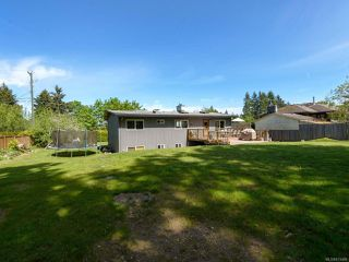 Photo 36: 3853 Livingstone Rd in ROYSTON: CV Courtenay South House for sale (Comox Valley)  : MLS®# 813466