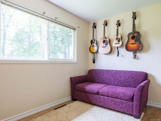 Photo 24: 3853 Livingstone Rd in ROYSTON: CV Courtenay South House for sale (Comox Valley)  : MLS®# 813466