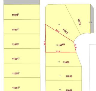 Photo 29: 11066 155 Street in Edmonton: Zone 21 House for sale : MLS®# E4162674