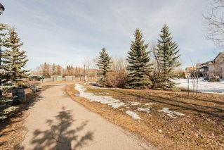 Photo 28: 407 11080 ELLERSLIE Road in Edmonton: Zone 55 Condo for sale : MLS®# E4164392