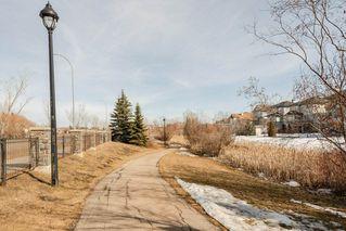 Photo 29: 407 11080 ELLERSLIE Road in Edmonton: Zone 55 Condo for sale : MLS®# E4164392