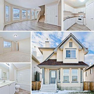 Main Photo: 45 Taracove Road NE in Calgary: Taradale Detached for sale : MLS®# A1048389
