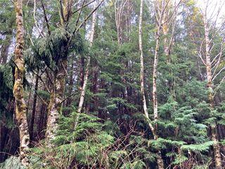 Photo 16: E-420 Quatsino Rd in : NI Port Hardy Land for sale (North Island)  : MLS®# 862758