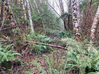 Photo 9: E-420 Quatsino Rd in : NI Port Hardy Land for sale (North Island)  : MLS®# 862758