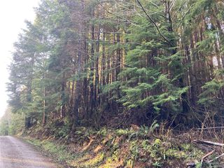 Photo 5: E-420 Quatsino Rd in : NI Port Hardy Land for sale (North Island)  : MLS®# 862758