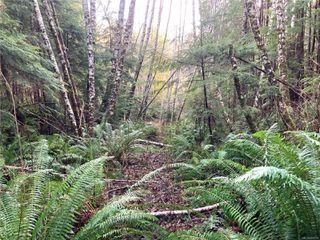 Photo 14: E-420 Quatsino Rd in : NI Port Hardy Land for sale (North Island)  : MLS®# 862758