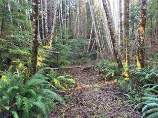 Photo 11: E-420 Quatsino Rd in : NI Port Hardy Land for sale (North Island)  : MLS®# 862758