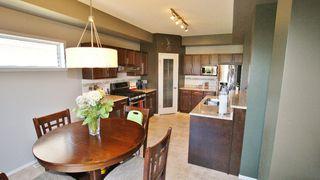 Photo 13: 248 Reg Wyatt Way in Winnipeg: North Kildonan Residential for sale (North East Winnipeg)  : MLS®# 1215336