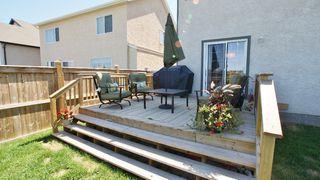 Photo 6: 248 Reg Wyatt Way in Winnipeg: North Kildonan Residential for sale (North East Winnipeg)  : MLS®# 1215336