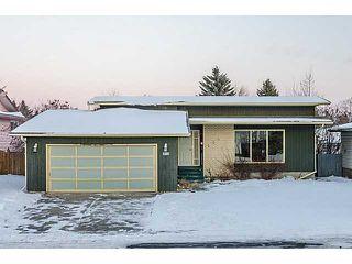 Photo 1: 124 WHITEHORN Road NE in Calgary: Whitehorn Residential Detached Single Family for sale : MLS®# C3644255