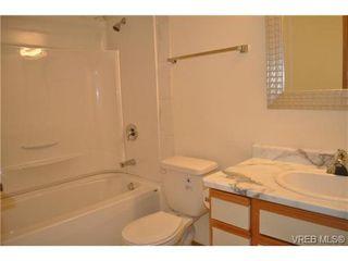 Photo 7: 213 1655 Begbie St in VICTORIA: Vi Fernwood Condo for sale (Victoria)  : MLS®# 692895