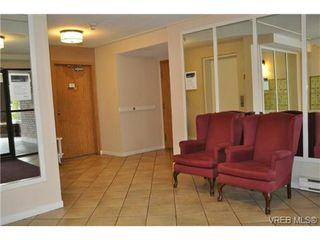 Photo 14: 213 1655 Begbie St in VICTORIA: Vi Fernwood Condo for sale (Victoria)  : MLS®# 692895