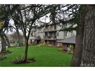 Photo 15: 213 1655 Begbie Street in VICTORIA: Vi Fernwood Condo Apartment for sale (Victoria)  : MLS®# 347022