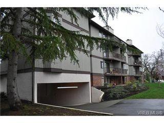 Photo 16: 213 1655 Begbie St in VICTORIA: Vi Fernwood Condo for sale (Victoria)  : MLS®# 692895