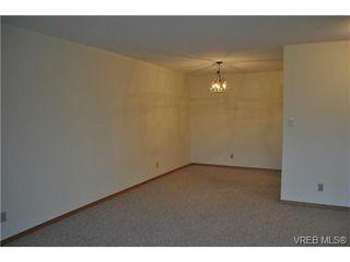 Photo 11: 213 1655 Begbie St in VICTORIA: Vi Fernwood Condo for sale (Victoria)  : MLS®# 692895
