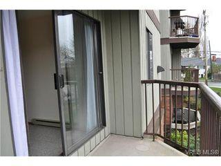 Photo 18: 213 1655 Begbie St in VICTORIA: Vi Fernwood Condo for sale (Victoria)  : MLS®# 692895