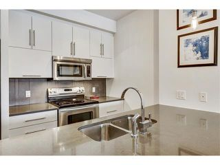 Photo 7: 302 414 MEREDITH Road NE in Calgary: Crescent Heights Condo for sale : MLS®# C4039289
