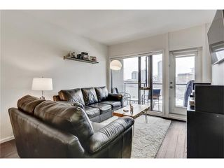 Photo 11: 302 414 MEREDITH Road NE in Calgary: Crescent Heights Condo for sale : MLS®# C4039289
