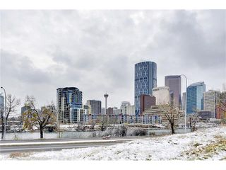 Photo 25: 302 414 MEREDITH Road NE in Calgary: Crescent Heights Condo for sale : MLS®# C4039289