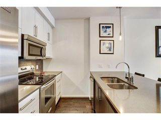 Photo 4: 302 414 MEREDITH Road NE in Calgary: Crescent Heights Condo for sale : MLS®# C4039289