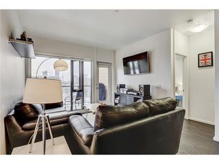 Photo 13: 302 414 MEREDITH Road NE in Calgary: Crescent Heights Condo for sale : MLS®# C4039289