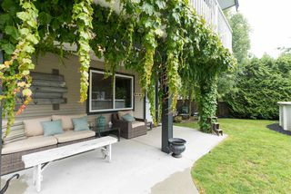 """Photo 16: 21546 50A Avenue in Langley: Murrayville House for sale in """"Murrayville"""" : MLS®# R2087207"""