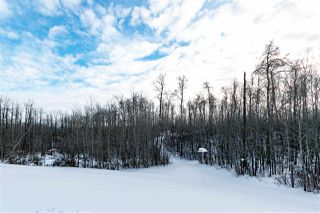 Photo 28: 86 51042 RGE RD 204: Rural Strathcona County House for sale : MLS®# E4139957