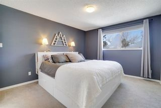 Photo 10: 37 Granville Crescent: Sherwood Park House for sale : MLS®# E4146347
