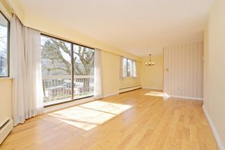 "Photo 5: 209 2080 MAPLE Street in Vancouver: Kitsilano Condo for sale in ""Maple Manor"" (Vancouver West)  : MLS®# R2350057"