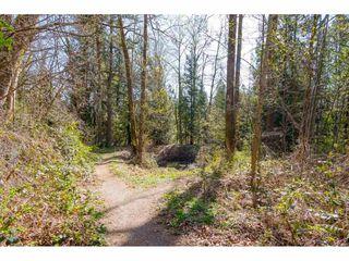 """Photo 20: 505 33318 E BOURQUIN Crescent in Abbotsford: Central Abbotsford Condo for sale in """"Nature's Gate"""" : MLS®# R2353880"""