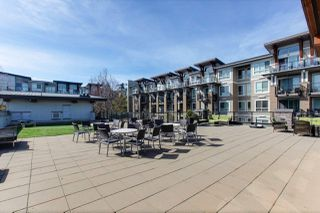 "Photo 19: 222 6688 120 Street in Surrey: West Newton Condo for sale in ""ZEN SALUS"" : MLS®# R2355066"