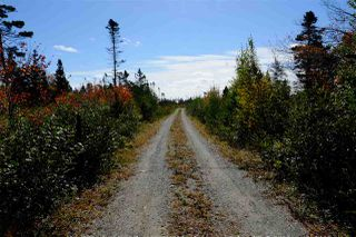 Photo 8: 2115 West Sable Road in Louis Head: 407-Shelburne County Vacant Land for sale (South Shore)  : MLS®# 201908473