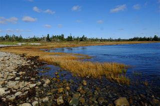 Photo 3: 2115 West Sable Road in Louis Head: 407-Shelburne County Vacant Land for sale (South Shore)  : MLS®# 201908473