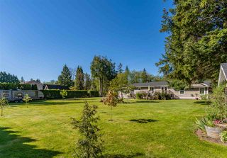 """Photo 16: 4558 SADDLEHORN Crescent in Langley: Salmon River House for sale in """"Salmon River"""" : MLS®# R2365220"""