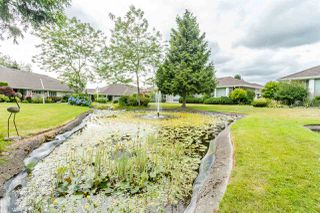 """Photo 20: 5 21746 52 Avenue in Langley: Murrayville Townhouse for sale in """"Glenwood Estates"""" : MLS®# R2386041"""