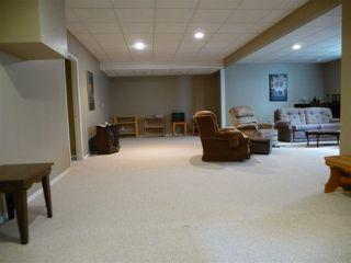 Photo 21: 1221 WERSHOF Road in Edmonton: Zone 20 House for sale : MLS®# E4170074
