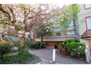 Photo 1: 129 7651 MINORU Blvd: Brighouse South Home for sale ()  : MLS®# V1117669