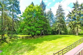 Photo 11: 425 Sparton Rd in VICTORIA: SW Prospect Lake House for sale (Saanich West)  : MLS®# 839475