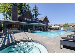 Photo 20: 6 2738 158 STREET in Surrey: Grandview Surrey Home for sale ()  : MLS®# R2108250