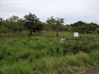 Photo 1:  in Coronado: Residential for sale (Boulevard ll)  : MLS®# Coronado Lot