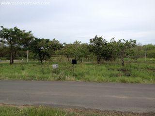 Photo 3:  in Coronado: Residential for sale (Boulevard ll)  : MLS®# Coronado Lot