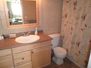 Photo 17: 11514 DARTFORD Street in Maple Ridge: Southwest Maple Ridge House for sale : MLS®# V1114213