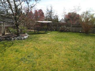 Photo 20: 11514 DARTFORD Street in Maple Ridge: Southwest Maple Ridge House for sale : MLS®# V1114213