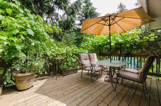 Photo 27: 686 E OSBORNE Road in North Vancouver: Princess Park House for sale : MLS®# R2082991