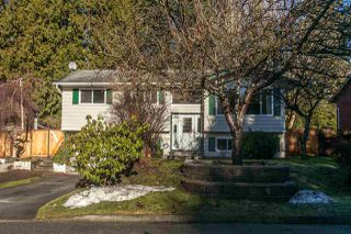 Photo 1: 21101 119 Avenue in Maple Ridge: Southwest Maple Ridge House for sale : MLS®# R2133994