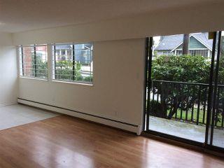 "Photo 2: 109 316 CEDAR Street in New Westminster: Sapperton Condo for sale in ""Regal Manor"" : MLS®# R2146791"