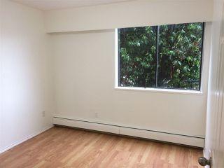 "Photo 7: 109 316 CEDAR Street in New Westminster: Sapperton Condo for sale in ""Regal Manor"" : MLS®# R2146791"