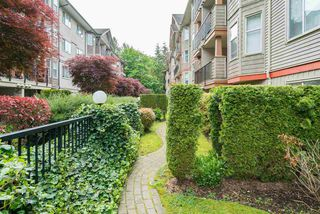 "Photo 4: 206 5438 198 Street in Langley: Langley City Condo for sale in ""Creekside Estates"" : MLS®# R2168002"