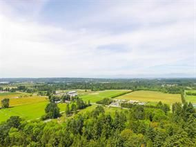 """Photo 16: 621 194 Street in Surrey: Hazelmere House for sale in """"HAZELMERE VALLEY"""" (South Surrey White Rock)  : MLS®# R2170440"""